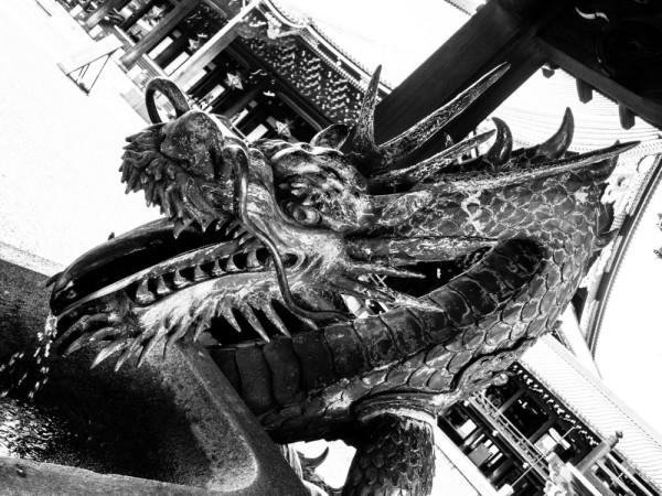Chinese dragon #1