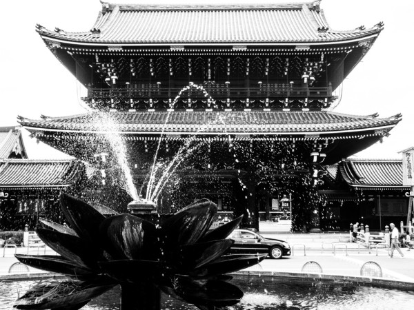 Lotus fountain #1