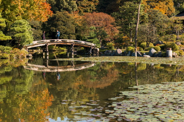 autumnal garden with a bridge #1