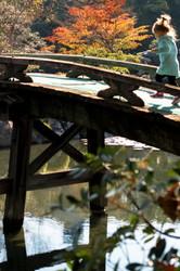 autumnal garden with a bridge #2