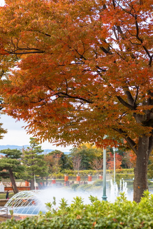 fountain and autumn leaves