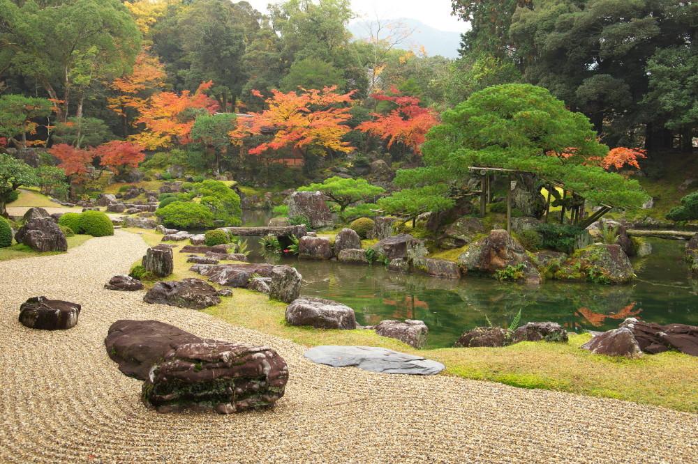 Autumn Splendor #2