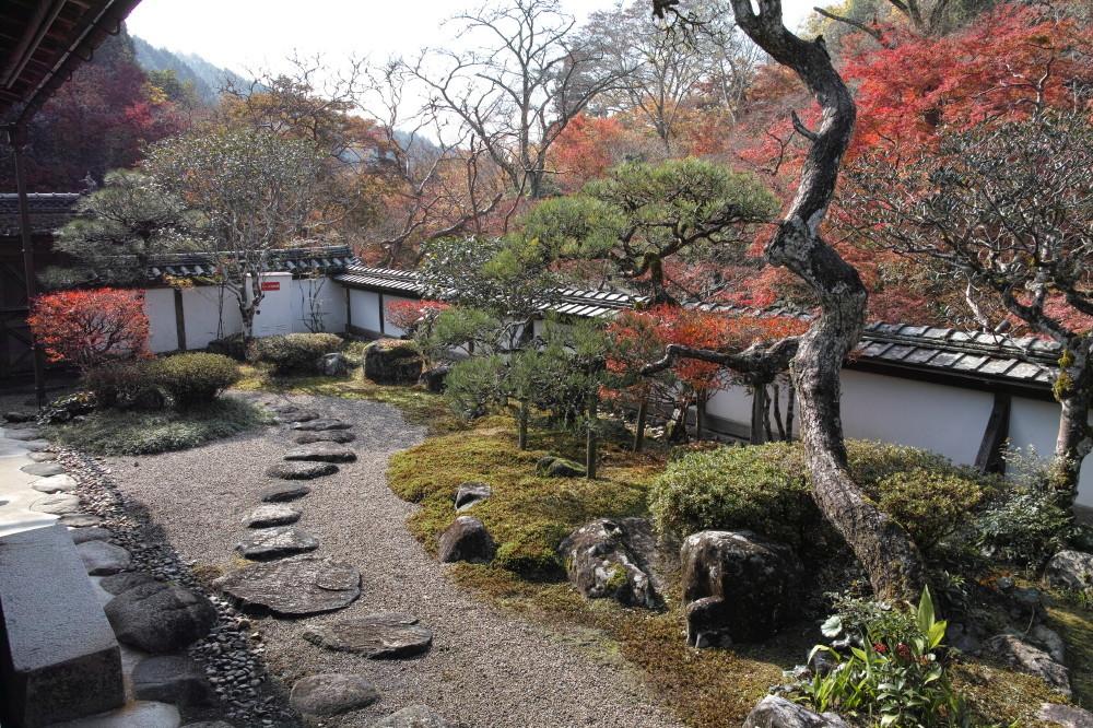 autumn garden #2