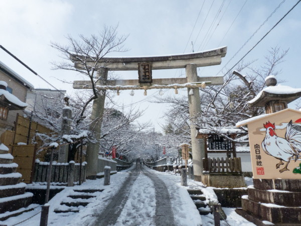 A snowy day in Kyoto #1