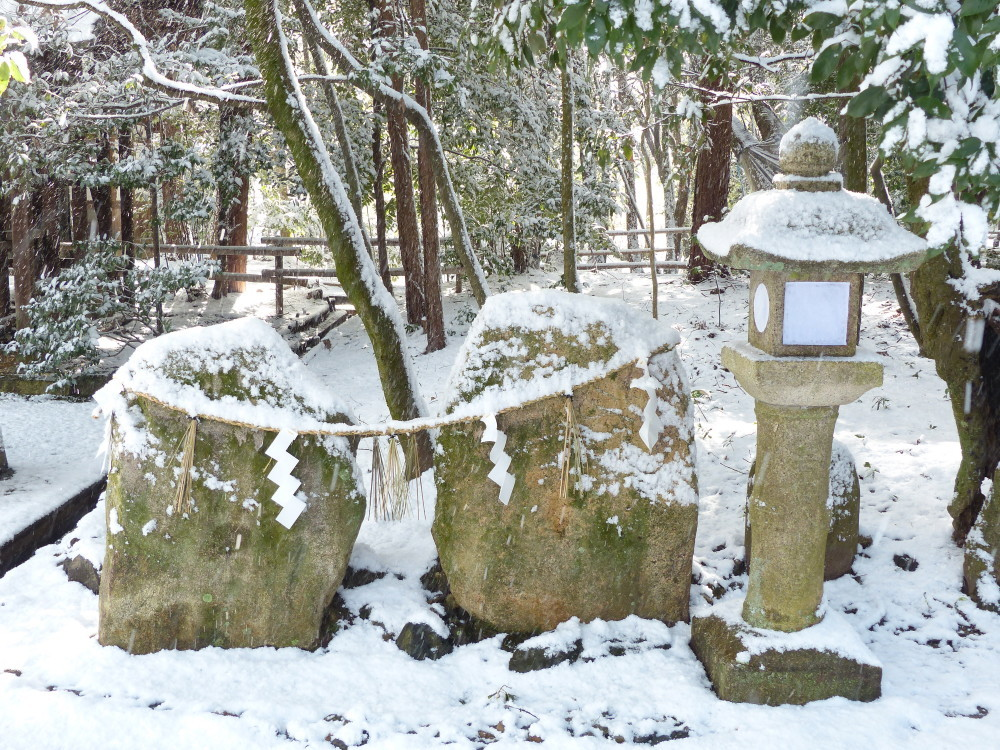 A snowy day in Kyoto #3