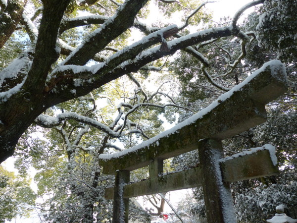 A snowy day in Kyoto #5