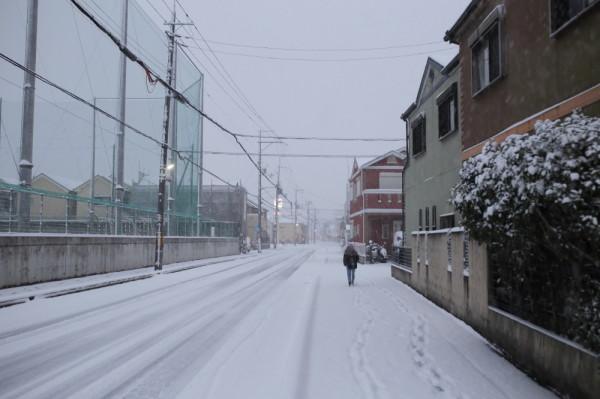 snow #4
