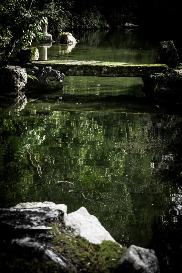 Darkgreen #1