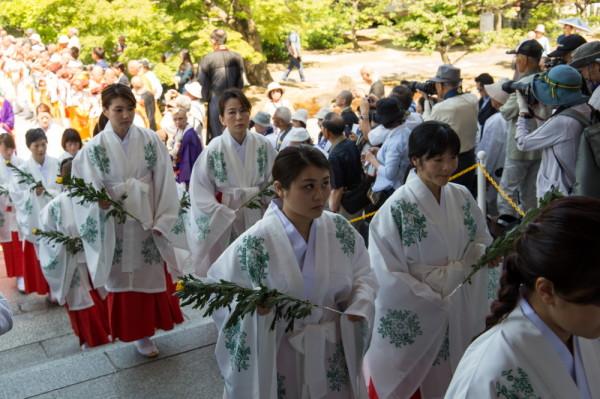procession #3