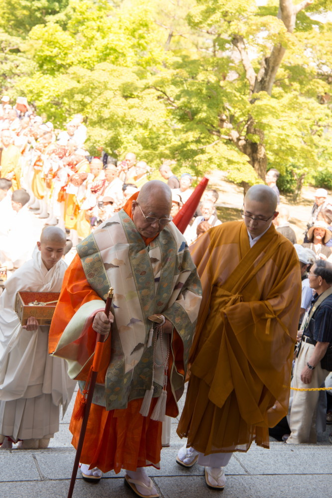 procession #5