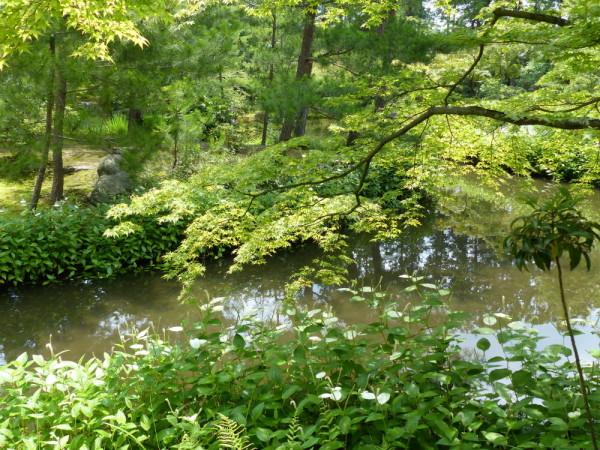 summer garden #2
