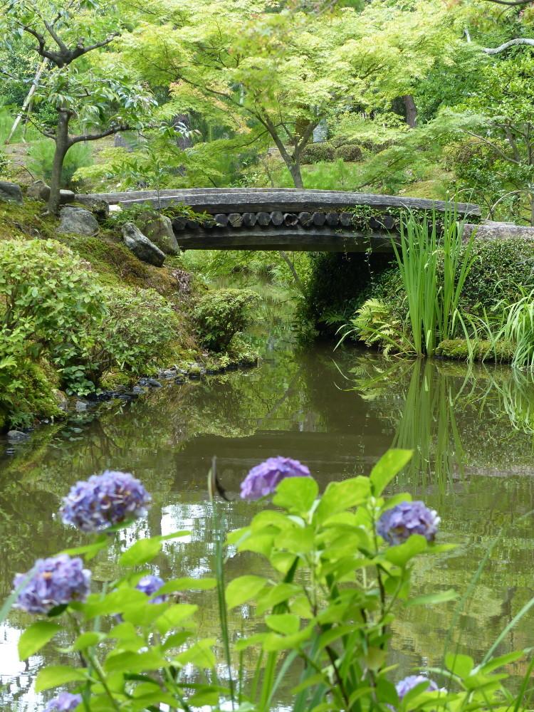 summer garden #3