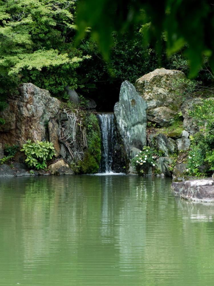 Palace garden tour #4