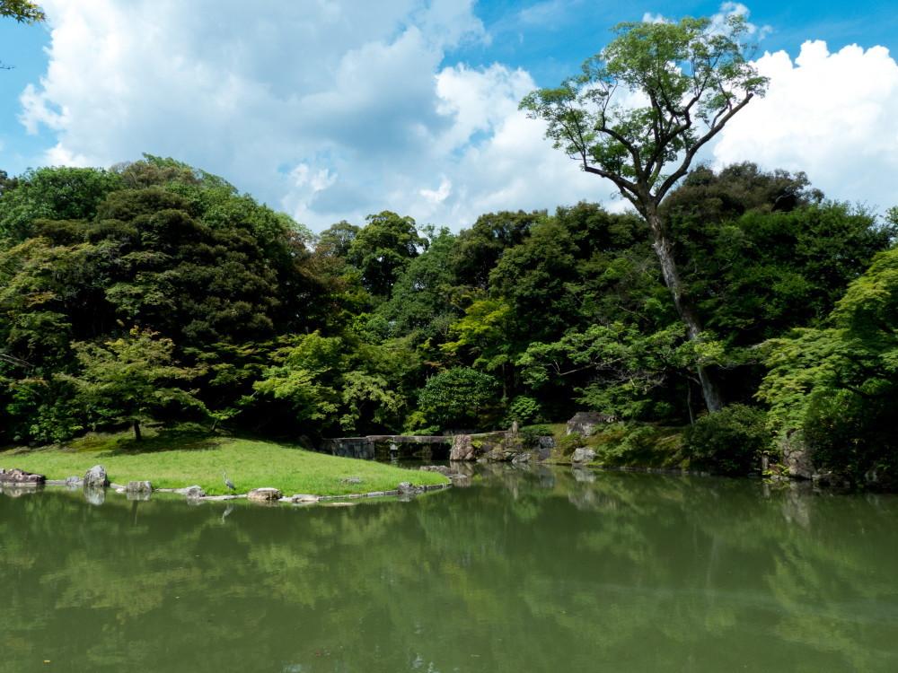 Palace garden tour #5