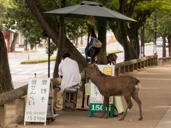 deer crackers 150yen