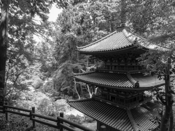 Nara in BW #3