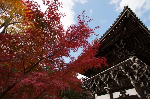 beautiful autumn Sunday