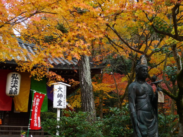 Buddha celebrates the autumn leaves.
