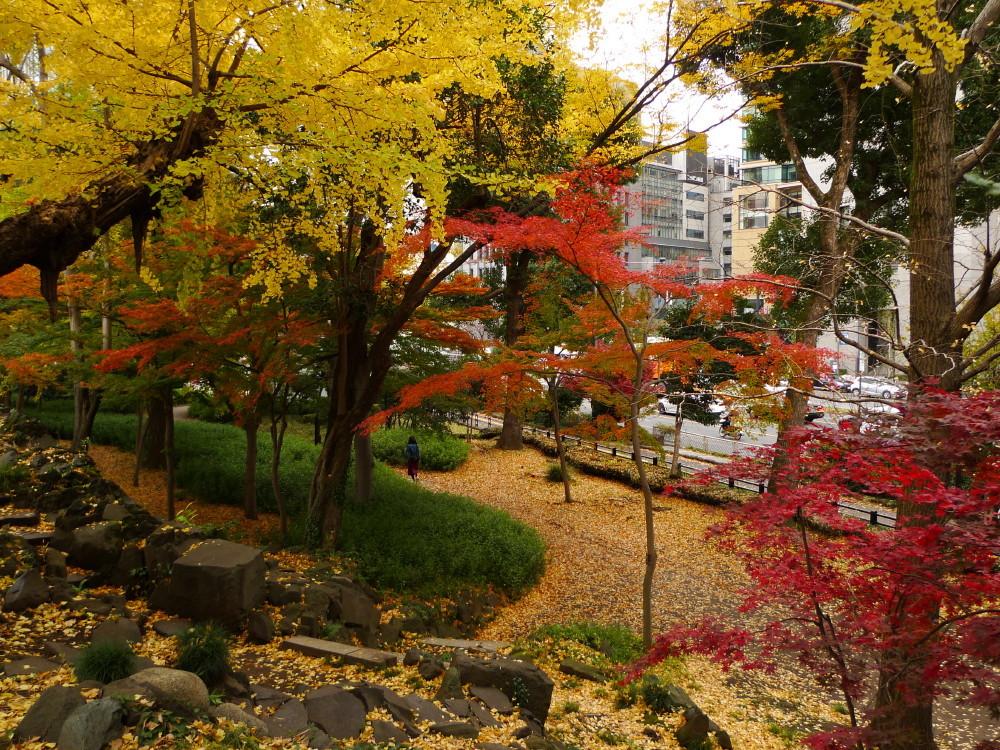autumn in Tokyo #1