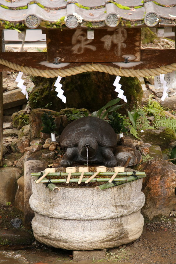 tortoise fountain #1
