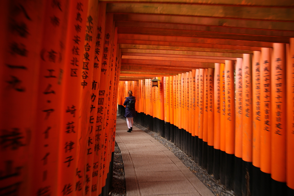 千本鳥居 thousand toriis