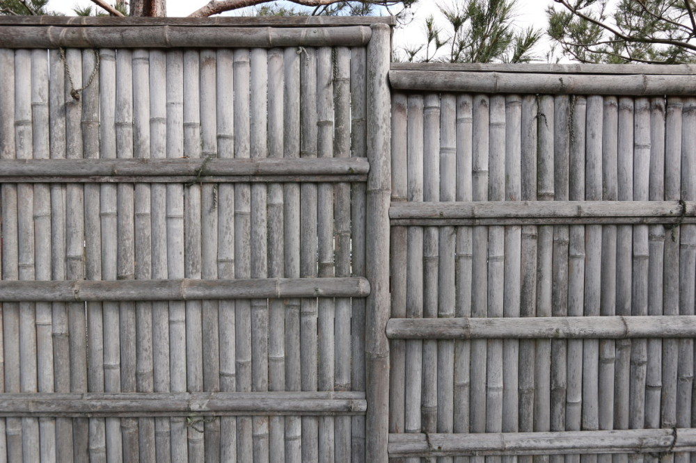 Bamboo Fence #1
