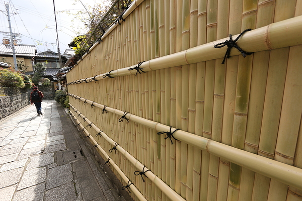 Bamboo Fence #2