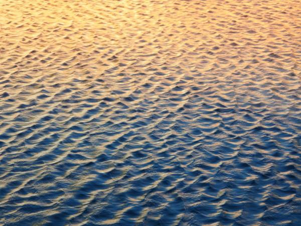 warm (water #1)