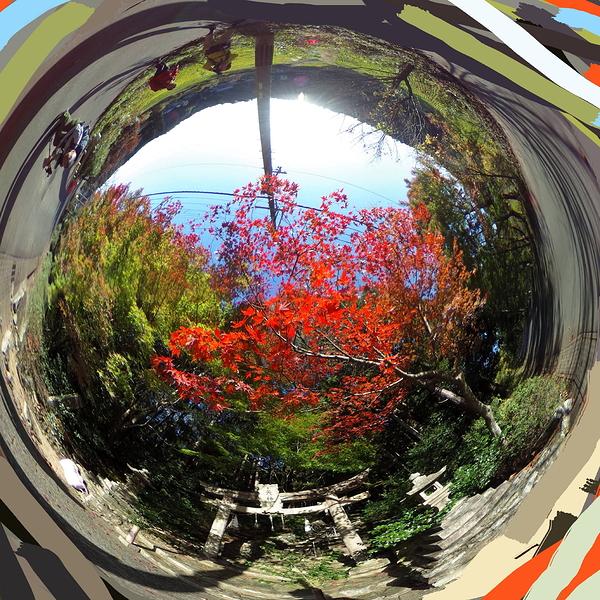 round autumn #3