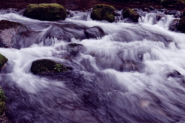 sacred water #1