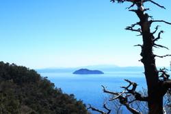 island in the lake #1
