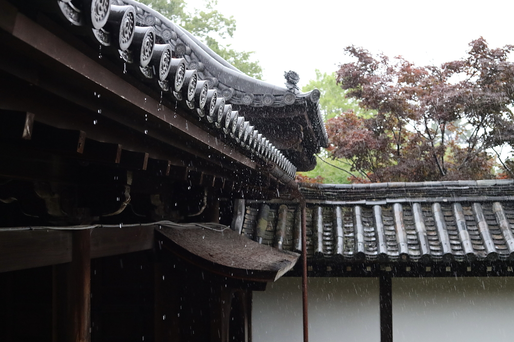 a rainy day at 東福寺 #1