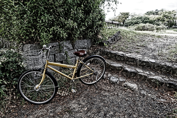 a bicycle and steps