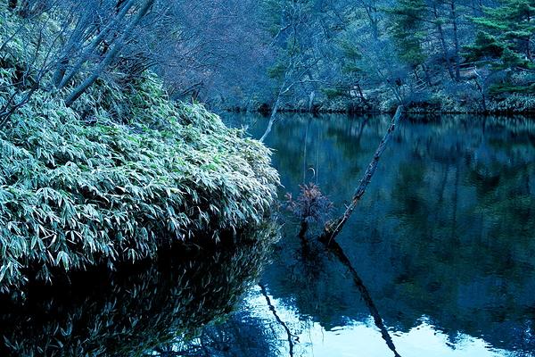 Le lac de montagne #1