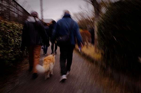 walking #1