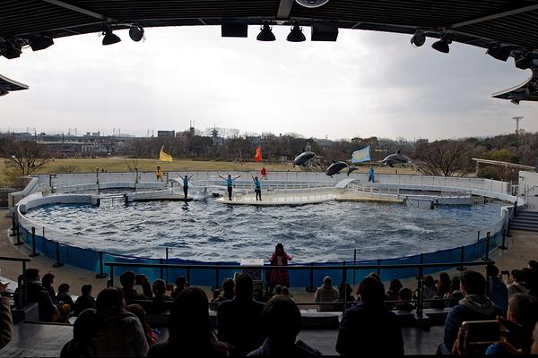 aquarium #3