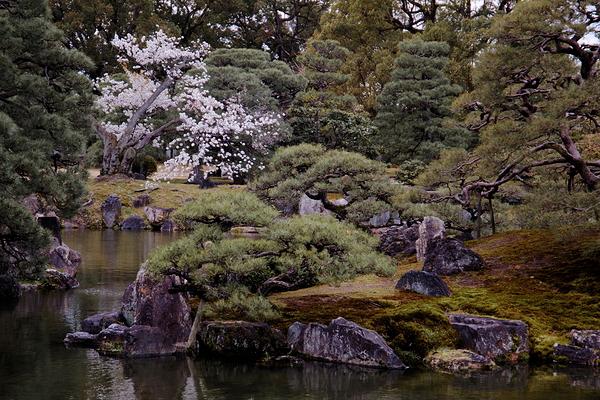 二条城 Nijo-jo Castle #1