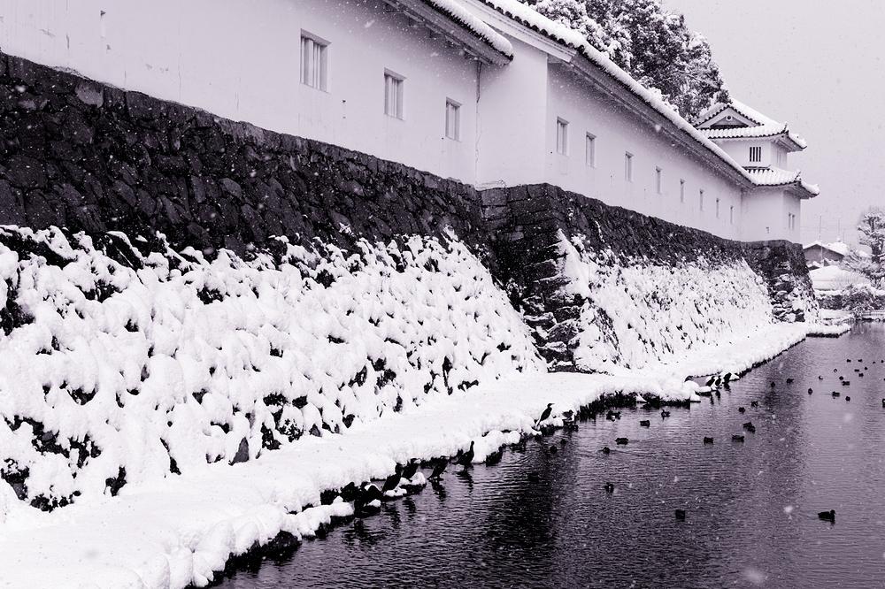 lots of snow #8