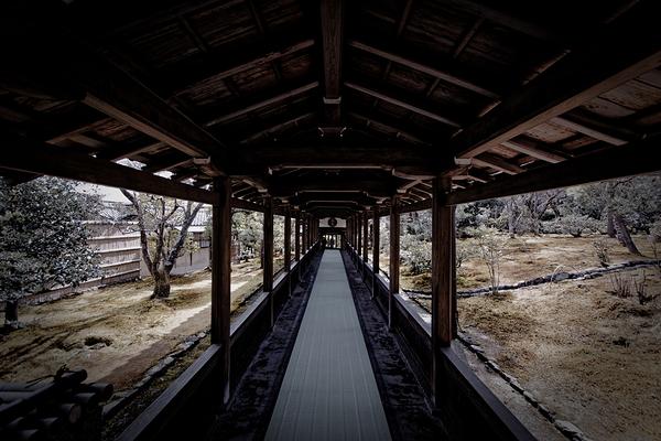 Tenryu-ji #3