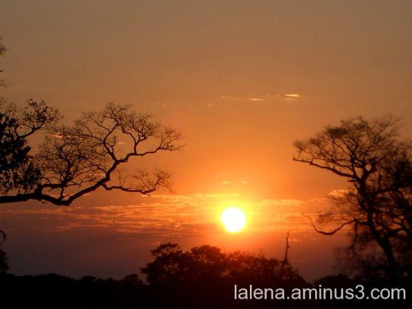orange sky in Pantanal (Brasil)