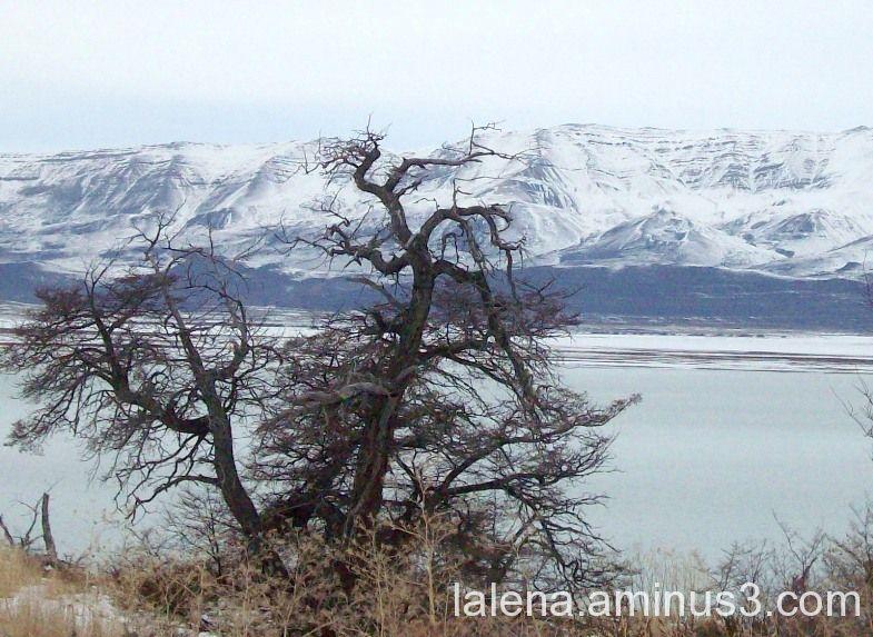 Invierno en la patagonia chilena