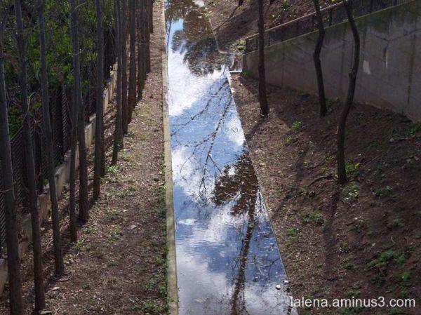 reflex sobre el canal I