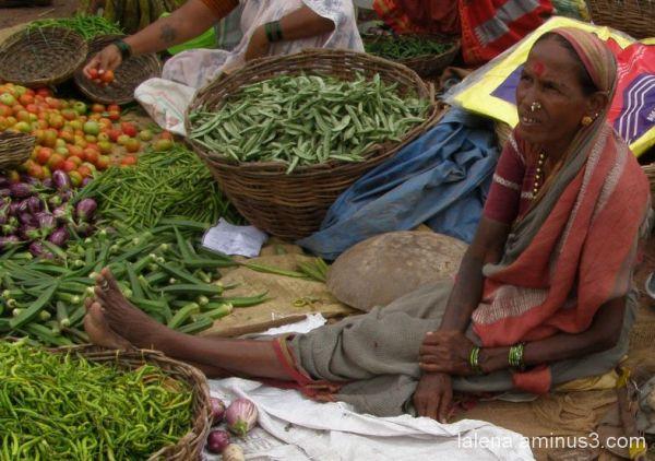 colors Índia 28