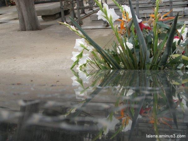 Petits detalls cementiri 10