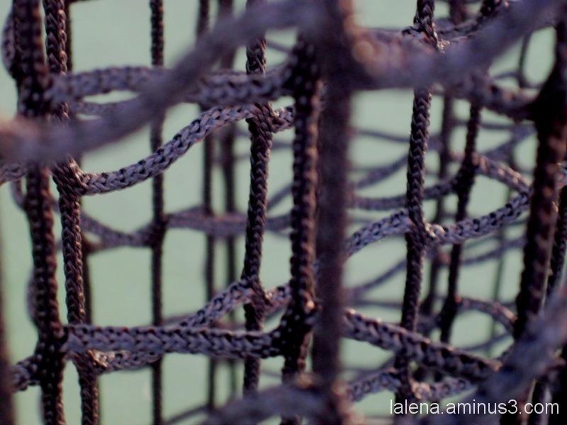 xarxa o cordatge