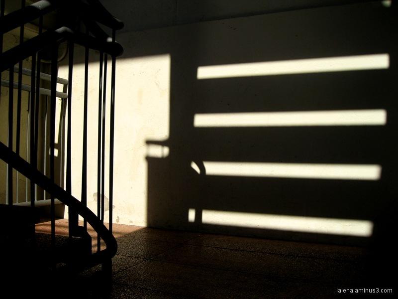 llums i ombres; cataractes...