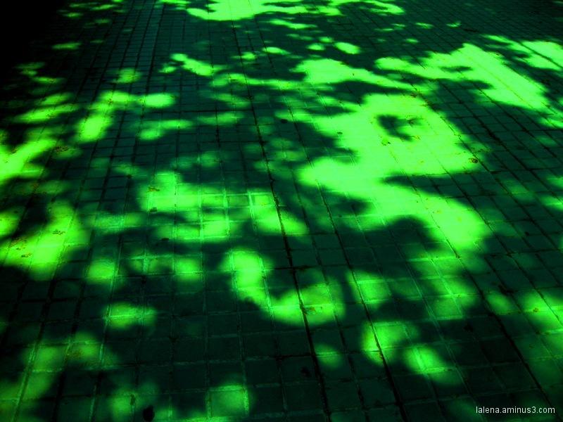 psicodèlic en verd