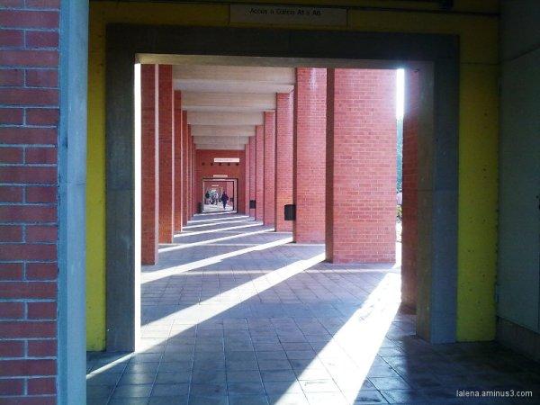 Punts de llum. Universitat politècnica BCN