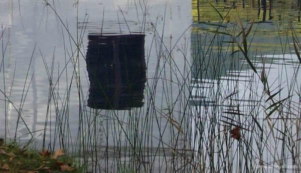 Reflex al llac