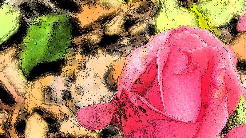 varaiació multicolor